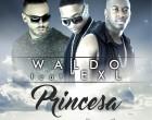 DJ Waldo - Princesa (feat. ExL)