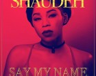 Shaudeh - She Got It