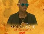 Shainyzz Jr - Me dá Gosto
