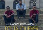 Bandidos - Tô Ta Querer (feat. Celso Notiço)