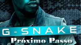G-Snake - Próximo Passo