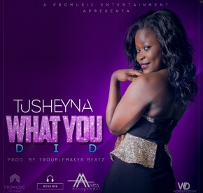 Tusheyna - What You Did