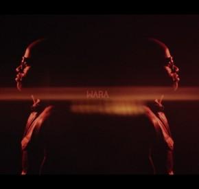 Wara - Vou Casar Contigo (feat. Masta)
